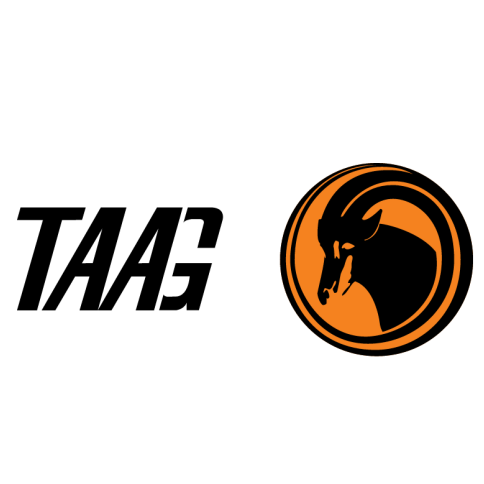 TAAG Angola Airlines Logo
