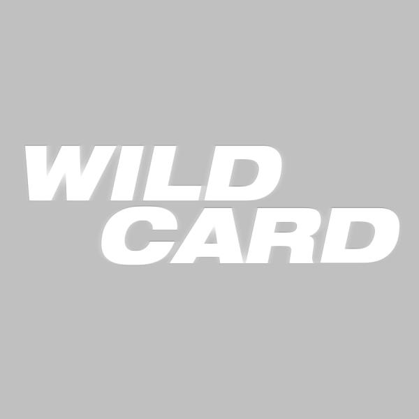 Wild Card Movie logo